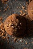 Fancy Dark Chocolate Truffles Stock Images