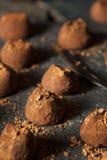 Fancy Dark Chocolate Truffles Stock Photography