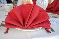 Fancy Dinner Fan Royalty Free Stock Photo