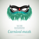 Fancy festive green feathers dress mask Royalty Free Stock Photos