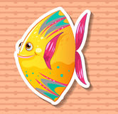 Fancy fish Royalty Free Stock Photos