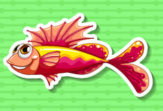 Fancy fish Stock Image