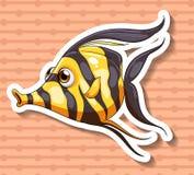 Fancy fish Stock Photo