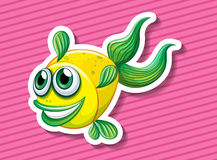Fancy fish Royalty Free Stock Photos