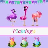 Fancy flamingos and colorful gift eggs Royalty Free Stock Photos