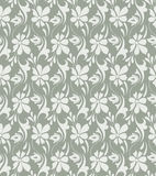 Fancy floral background Royalty Free Stock Photo