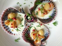 Fancy food with scallops and cream on a white plate Royalty Free Stock Image
