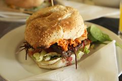 Fancy fusion burger Royalty Free Stock Images