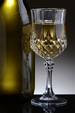 Fancy Glass of White Wine Stock Photo