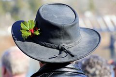 The fancy hat. Stock Image