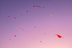 Fancy Kites against on a sunset Royalty Free Stock Image