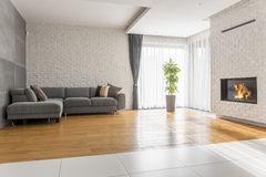Fancy living room with sofa. Fireplace and plant stock image