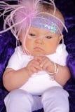 Fancy Newborn Stock Image