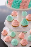 Fancy Pink and Green Cupcakes. Lots of fancy cupcakes. Frosted in pink and green. Pastel tones Stock Image