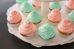 Fancy Pink and Green Cupcakes. Lots of fancy cupcakes. Frosted in pink and green. Pastel tones Stock Photos