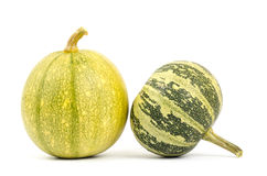 Fancy pumpkin Stock Photography