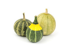 Colorful pumpkin Royalty Free Stock Photography