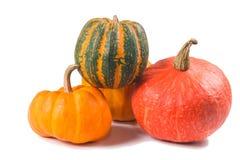 Fancy pumpkin Royalty Free Stock Photos