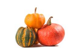 Fancy pumpkin Stock Images