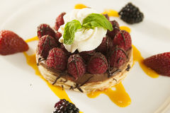 Fancy rasberry and strawberry dessert. Fancy rasberry and strawberry dessert on a white plate in a restaurant setting Stock Images