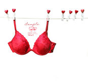 Fancy red bra hanging on clothesline. With white background Royalty Free Stock Image