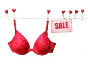Fancy red bra hanging on clothesline. With white background Royalty Free Stock Photography