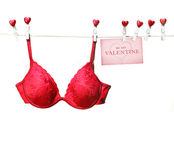 Fancy red bra hanging on clothesline. With white background Royalty Free Stock Images