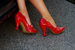 Fancy red heels Royalty Free Stock Image