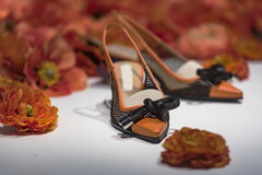 Fancy shoes i Royalty Free Stock Photography