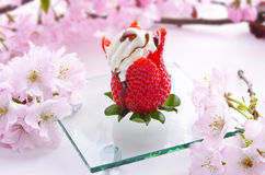 Fancy strawberry cream dessert Stock Images