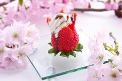 Fancy strawberry cream dessert. Fancy, delicious strawberry cream dessert and flowers Stock Images