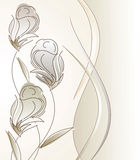 Fancy vector design for greeting card Stock Photos