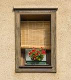 Fancy Window Stock Photography