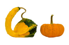 Fancy yellow pumpkin isolated on white background Stock Images