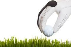 Fand meinen Golfball stockbild