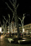 Faneuil Hall Trees lit for Christmas Stock Images