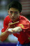 Fang Bo Stock Photography