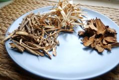 Assorted chinese traditional medicine herbs on a plate. Royalty Free Stock Photo