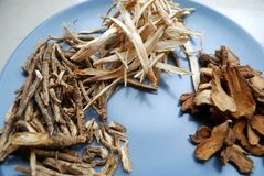 Assorted chinese traditional medicine herbs on a plate. Royalty Free Stock Photos