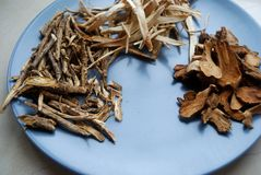 Assorted chinese traditional medicine herbs on a plate. Stock Photos