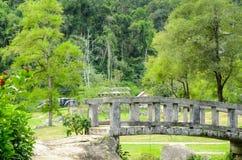 Fang Hot Springs Thailand Royaltyfria Foton