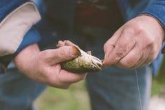 Fang-und Freigabe-Fischen-Lebensstil lizenzfreies stockfoto