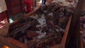 Fang von Hummern im Fischmarkt stock video