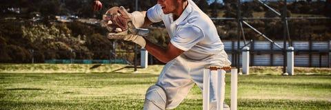 Fangender Kricketball des Wicketkeeper hinter Stümpfen stockfotos