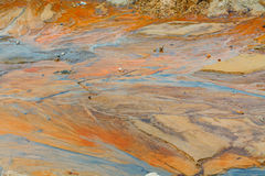 Fango Clay Sand Shells Water dopo pioggia Fotografia Stock