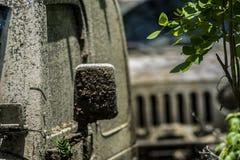 Fango della corsa del wrangler del gruppo della jeep Immagine Stock Libera da Diritti