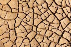Fango seco agrietado Imagen de archivo