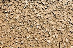fango seco, agrietado Foto de archivo
