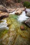 Fangorivier in Corsica, Frankrijk Royalty-vrije Stock Afbeelding
