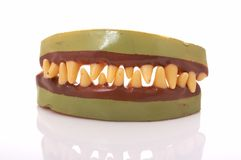 Fangs Royalty Free Stock Photo